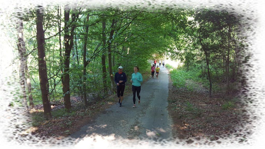 HAC courir en forêt